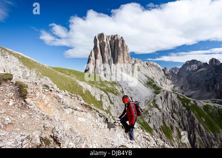 Scalatore sulla Croda Rossa Via Ferrata, Mt Tscheinerspitze sul retro, Dolomiti, Trentino-Alto Adige, Italia Foto Stock