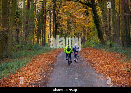 Escursioni in bicicletta lungo il vicolo del paese attraverso il bosco in autunno Holkham Norfolk Foto Stock