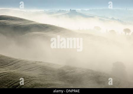 Paesaggio di mattina con la nebbia, nei pressi di San Quirico d'Orcia, Val d'Orcia, Val d'Orcia, Siena District, Toscana, Italia