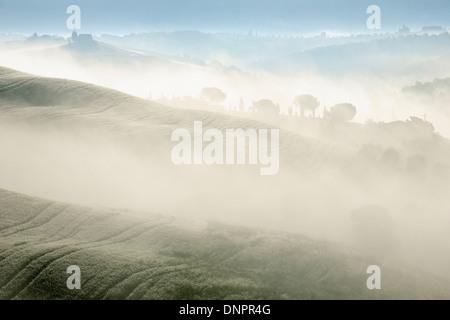 Paesaggio di mattina con la nebbia nei pressi di San Quirico d'Orcia, Val d'Orcia, Val d'Orcia, Siena district, Toscana, Italia