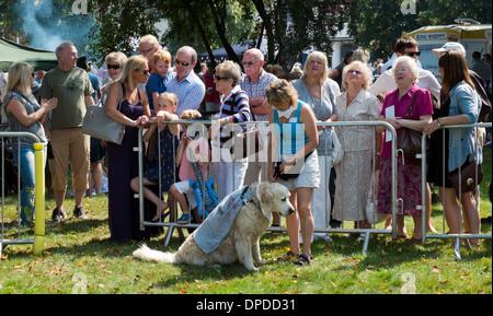 La donna che mostra il suo cane in un dog show Beaconsfield paese annuale fayre (fair) Buckinghamshire REGNO UNITO Foto Stock