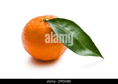 Mandarino fresco su sfondo bianco Foto Stock