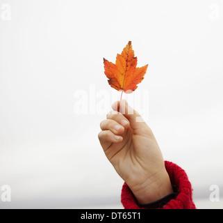 Una giornata al lago Ashokan. Una giovane ragazza in un inverno rosso ponticello a maglia con in mano una foglia Foto Stock