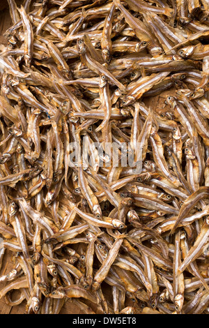 Acciughe essiccate in vendita al mercato di Hoi An Foto Stock