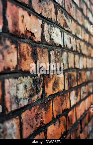 In prossimità di una parete di mattoni