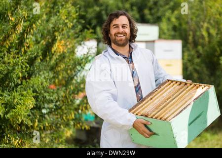 Apicoltore maschio portante cassa piena di favi Foto Stock