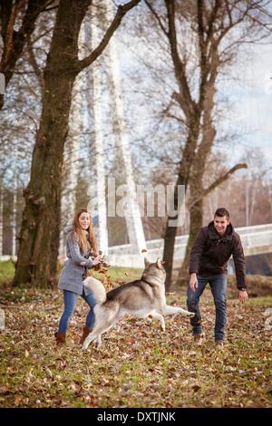 Giovane giocando con il cane all'aperto, Croazia Foto Stock