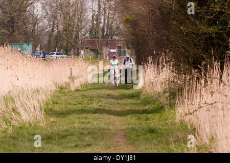 Vista frontale di una coppia di anziani passeggiate in campagna con un cane Foto Stock