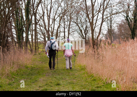 Vista posteriore di una coppia di anziani passeggiate in campagna Foto Stock