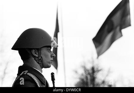 Guardia d'onore Foto Stock