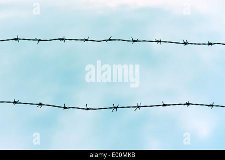 Stagliano filo spinato contro il cielo blu Foto Stock