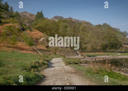 Loughrigg è sceso dal Rydal acqua Foto Stock