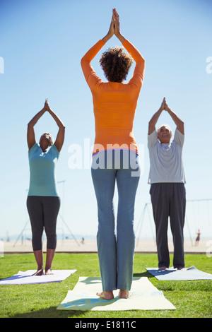Yoga classe nel soleggiato parco Foto Stock