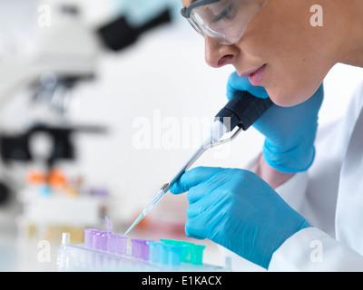 Donna scienziato usando una pipetta a goccia liquido in provette eppendorf. Foto Stock