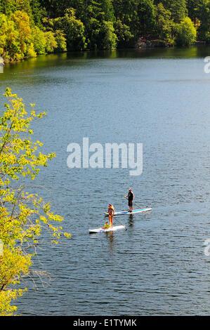 Un uomo e una donna e il loro bambino godere di stand up paddle imbarco sul lago Thetis nel lago Thetis Parco Regionale in Victoria, BC. Foto Stock