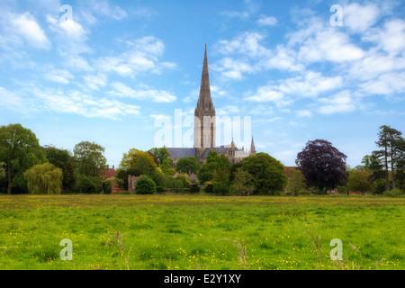 La Cattedrale di Salisbury, Salisbury, Wiltshire, Inghilterra, Regno Unito Foto Stock