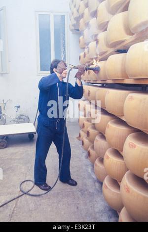 Industria casearia,produzione di parmigiano reggiano,70's Foto Stock