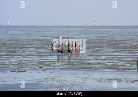 Watt-escursioni con una guida durante il riflusso a la spiaggia di Duhnen. Con ebb, il naufragio sea-mirror è contrassegnato a causa delle maree. La fine del BBI è chiamato tide-acque basse. Foto: Klaus Nowottnick Data: 11 Maggio 2013