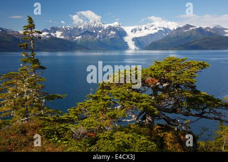 Lungo il passaggio di Ester e il porto di pozzi, Prince William Sound, Chugach National Forest, Alaska. Foto Stock