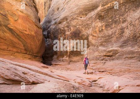 Hanksville, Utah - Susan Newell, 65, escursioni in poco cavallo selvaggio canyon. Foto Stock