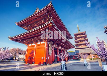 Il Tempio di Senso-ji di Asakusa, Tokyo, Giappone. Foto Stock
