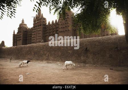 Grande Moschea, Djenne, Mopti regione, Mali Foto Stock