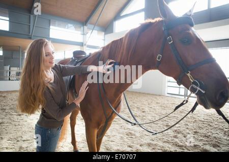 Femmina cavaliere toelettatura del cavallo nel paddock per interni Foto Stock