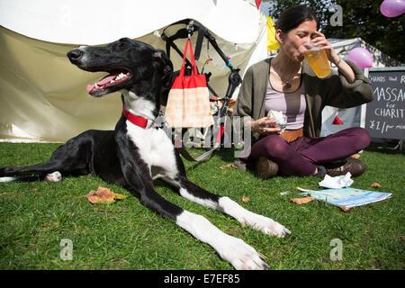 Gente radunarsi per appendere fuori, ascoltare le bande e altre attività presso la Blue Ribbon Village. Thames Festival Foto Stock