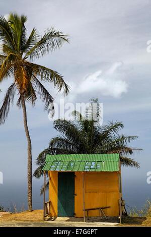 Piccola capanna giallo verde con tetto dello stagno, alberi di cocco, Tobago Trinidad e Tobago Foto Stock