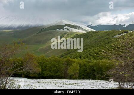 Esaminando il piano Grande, in primavera, da sud; Parco Nazionale dei Monti Sibillini, Italia. Foto Stock