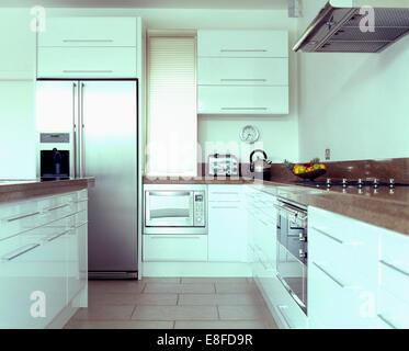 In stile americano e in acciaio inox frigo freezer e forni - Forno a legna cucina moderna ...