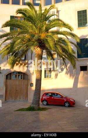 Palma de Mallorca, Maiorca, isole Baleari, Spagna. Auto rossa parcheggiato sotto palme vicino alla cattedrale. Foto Stock