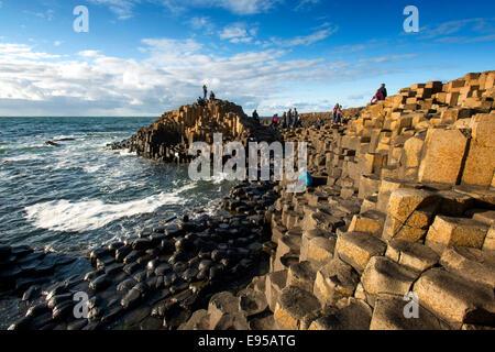 Il Giants Causeway, Co Antrim, Irlanda del Nord