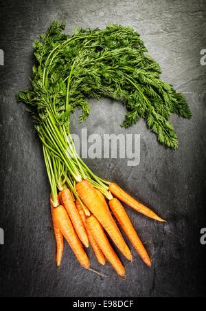 Grappolo di azienda agricola freschi Carote con le loro foglie verdi in un mercato degli agricoltori giacente su un vecchio trama della superficie di ardesia, vista aerea Foto Stock