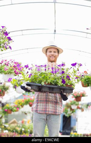 Ritratto di felice giardiniere azienda fioriere in cassa in serra Foto Stock
