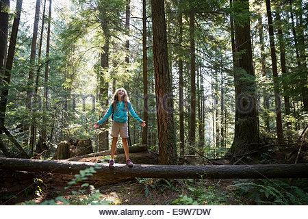 La ragazza con le braccia aperte su albero di boschi Foto Stock