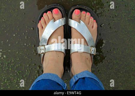 Cricket - a piedi nudi con rosa toenails in argento sandali pagaiando sul fuori campo lato dopo piogge torrenziali Foto Stock