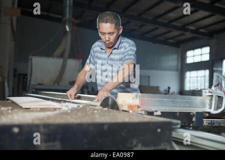 Carpenter il taglio di legno doga con sega elettrica in fabbrica, Jiangsu, Cina