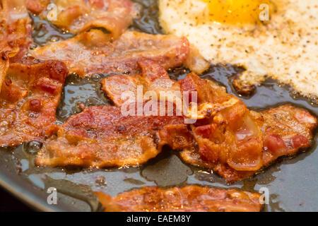 Una colazione grassa della pancetta fritta e un uovo friggere in una padella. Foto Stock