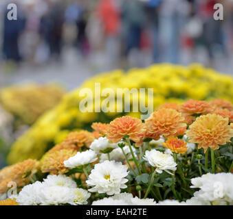 Autunno fiori sul mercato nel giorno di pioggia con sagome sfocate di persone Foto Stock