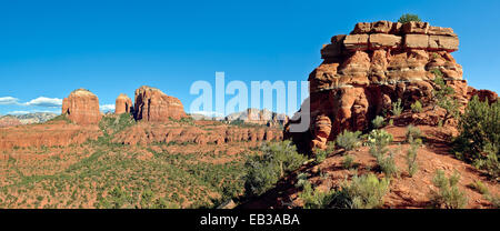 Stati Uniti d'America, Arizona, Yavapai County, Coconino National Forest, Cattedrale Rock visto da Baldwin altare Foto Stock