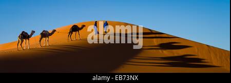 CARAVAN DESERTO DEL SAHARA ERG CHEBBI MERZOUGA MAROCCO Foto Stock