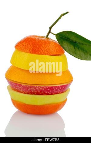 Diverse fette di frutta Foto Stock