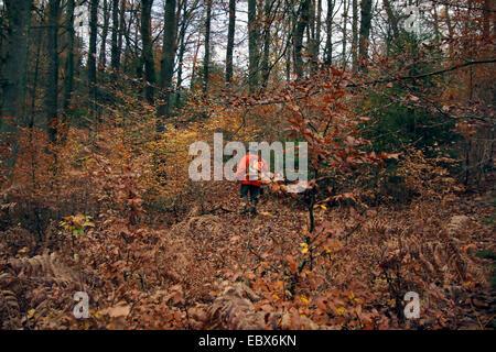 Hunter (driver) la pettinatura attraverso la foresta di autunno con una camicia di colore del segnale durante un Foto Stock