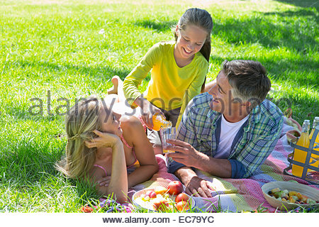 Famiglia avente un picnic in campagna Foto Stock