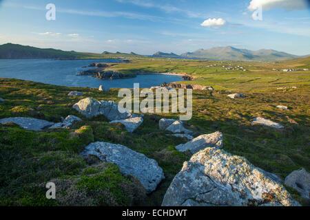 Massi sotto Brandon Mountain, Clogher Head, la penisola di Dingle, nella contea di Kerry, Irlanda. Foto Stock