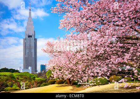 Tokyo, Giappone primavera a Shinjuku Gyoen Park. Foto Stock