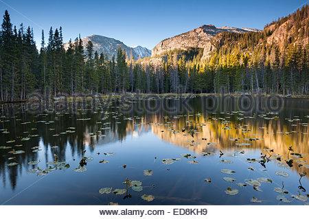 Ninfa Lago le riflessioni del mattino, Rocky Mountain National Park, COLORADO Foto Stock