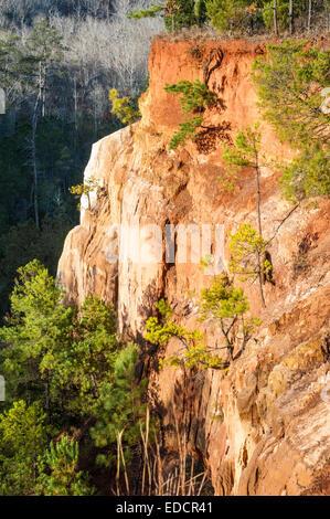 Soleggiato scogliera a Providence Canyon nella Provvidenza Canyon State Park, Lumpkin, Georgia, Stati Uniti d'America.