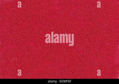 Sullo sfondo di un piccolo rosso sfere metalliche Foto Stock